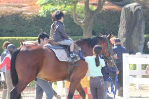 画像:乗馬