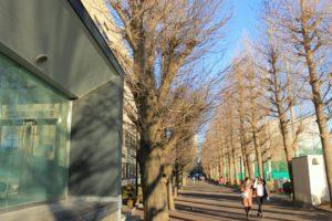 画像:冬の学園